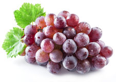 Bunch of purple grapes on the white. Royalty Free Stock Images