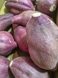 Bunch of purple sweet potatoes in a carton box. stock photography