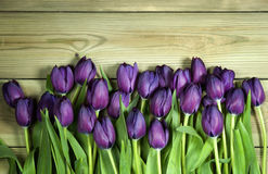 A bunch of purple tulips on the bottom of a wooden background wi. Th space for text Royalty Free Stock Photo