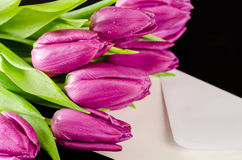 Bunch of purple tulips with letter. On dark wooden background Royalty Free Stock Photos