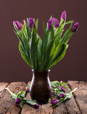 Bunch of purple tulips Stock Photography