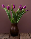 Bunch of purple tulips Royalty Free Stock Photography