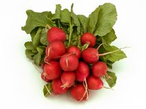 Bunch of radish Stock Photo