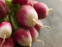 Bunch Of Radish Royalty Free Stock Image