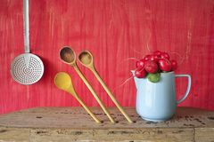 Bunch of radish Royalty Free Stock Images