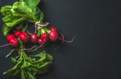 Bunch of radish with leaves on black background. Top view, copy space Royalty Free Stock Photography