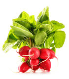 Bunch of radish on white Stock Photo
