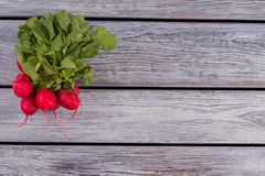 Bunch of radish on wood and copy space. Top view. Free space for text Royalty Free Stock Photography