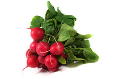 A bunch of radishes. Before a white background stock photos