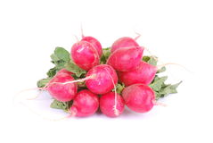 Bunch of red radish Royalty Free Stock Images