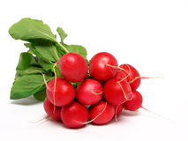 Bunch of radishes. Isolated Royalty Free Stock Image