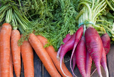 Bunch of radishes and carrots. Bunch of radishes next brunch of carrots Royalty Free Stock Image