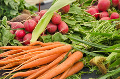 Bunch of radishes and carrots Stock Photo