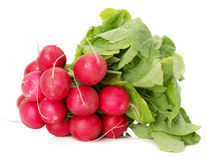 Bunch of radishes isolated on a white background.  Royalty Free Stock Photography