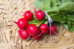 Bunch of radishes with leaves on wicker table Stock Image