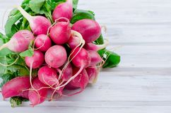 Bunch of radishes with leaves on a wooden table. Big bunch of red radishes with leaves for salad on a white old wooden table, top view Stock Images