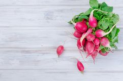 Bunch of radishes with leaves on a wooden table. Big bunch of red radishes with leaves for salad on a white old wooden table, top view Stock Photos