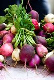 Bunch of radishes for sale at the farmers market. Bright bunch of red and white radishes for sale at the farmers market in Des Moines, Iowa Stock Photography