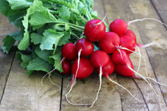 A bunch of radishes with tops Royalty Free Stock Images