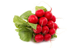 Bunch of radishes on a white background. Healthy fresh vegetable. Fresh radishes on a white background. Healthy food Stock Images