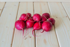 Bunch of radishes on wooden background. Fresh Radishes on wooden background selective focus close-up shot Royalty Free Stock Image
