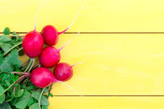 A bunch of radishes on a wooden table. Five radishes with tops lie on a wooden table. The objects are in the lower left corner Royalty Free Stock Images