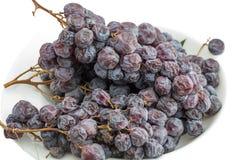 Bunch of raisins Stock Image