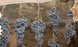 Bunch of raisins Royalty Free Stock Image