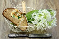 Bunch of ramson wild garlic flower heads and leaves on basket wi. Th fresh bread and ramson butter. antique silver knive Stock Photography