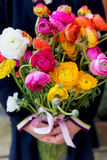 Bunch of Ranunculus in Hands Royalty Free Stock Photos