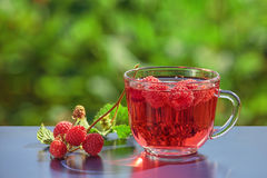 A bunch of raspberry and cold soda. A colorful picture of raspberries and soda water in glass with a natural green background. Natural backlighting. The concept Royalty Free Stock Images