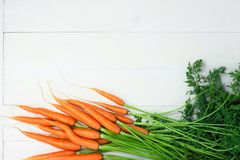 Bunch of raw carrots on white background. stock image