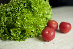 Bunch of raw organic green frisee salad and two tomatoes Royalty Free Stock Image