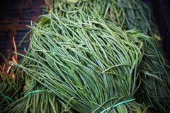 Bunch of raw salwort food vegetable on market stall stock images