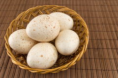 Bunch of raw turkey eggs in a bowl Stock Image