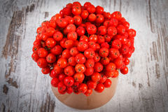 Bunch of red autumn rowan on rustic wooden background Royalty Free Stock Photos
