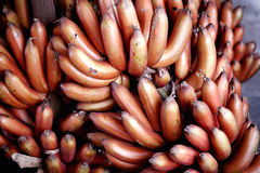 Bunch of red bananas Royalty Free Stock Images