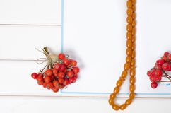 A bunch of red berries rowanberry beads a notepad pen royalty free stock image