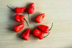 Bunch of Red Bhoot Jolokia Spicy ghost pepper isolated in wooden background with space for text.  royalty free stock photos