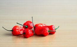 Bunch of Red Bhoot Jolokia Spicy ghost pepper isolated in wooden background with space for text.  stock photography