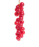 Bunch of red currant berries Stock Photography