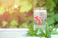 Bunch of red currants in a glass of soda. Mint leaves. Summer drink. Royalty Free Stock Images