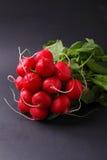 Bunch of a red garden radish Stock Photos