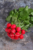 Bunch of a red garden radish with green leaves Stock Photo