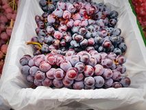 Bunch of Red Grape Fruits in White Plastic Bag. Close-up Bunch of Red Grape Fruits in White Plastic Bag royalty free stock image