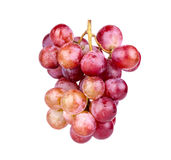 Bunch of red grape Royalty Free Stock Images