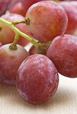 A Bunch of red grapes Stock Images