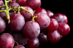 Bunch of red grapes on black surface Stock Photos