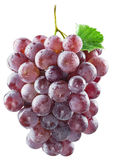 Bunch of red grapes. Clipping paths. Isolated Royalty Free Stock Image
