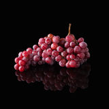 Bunch of red grapes isolated on black Stock Images